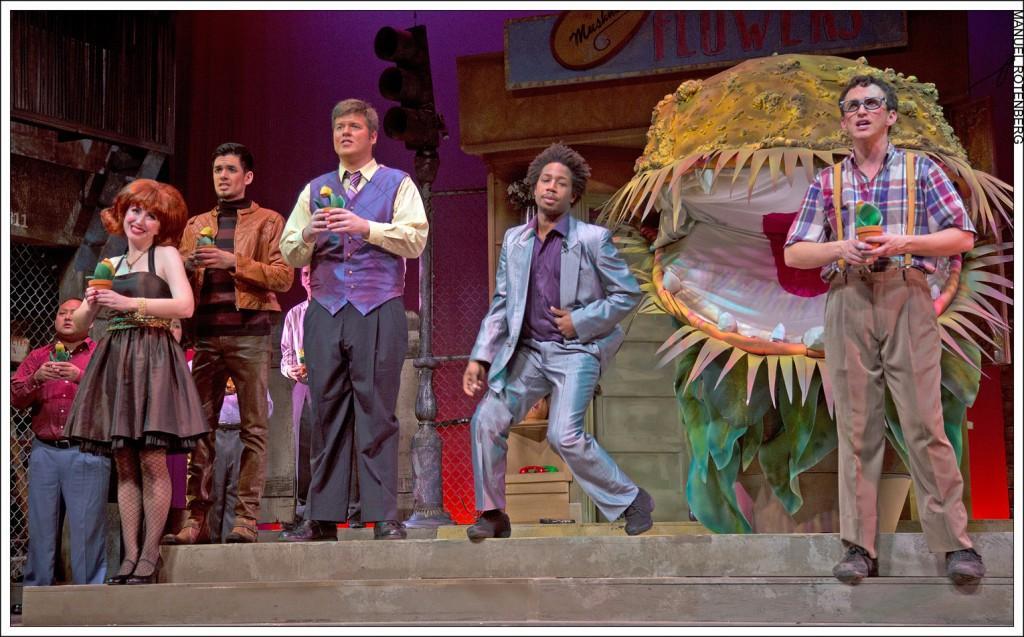 Audrey II eats up Saville Theatre
