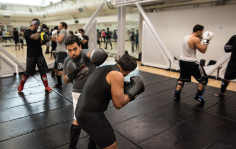 Pulling all the punches: Students get on the mat and exchange blows for new MMA club on campus