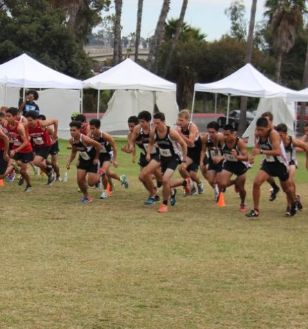 The Knights cross country team compete Pacific Coast Athletic Conference championship at Mission Bay Park on Oct. 28. Photo by Esai Melendez