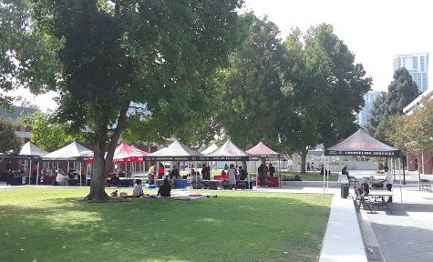 City College continues suicide prevention efforts, holds yearly educational fair