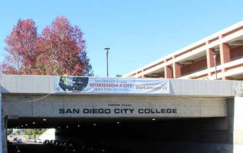 New City College website expected to launch in January