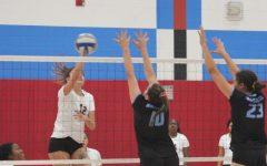 Knights volleyball reaches playoffs
