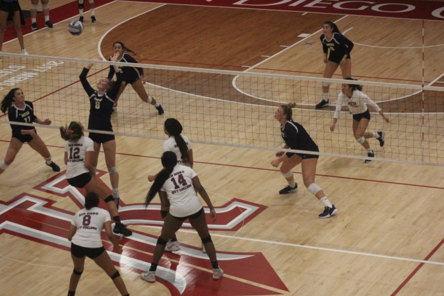 City College Women's Volleyball playing.