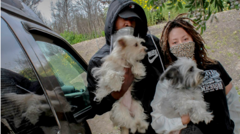 Ty Johnson and Nicole Mckissick holding their dogs