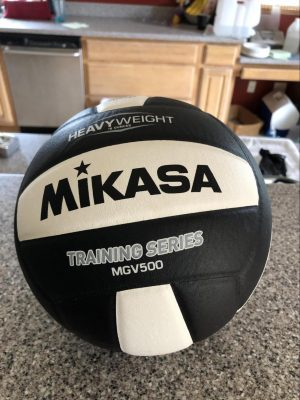 weighted setter ball