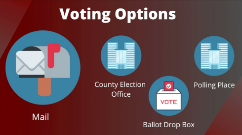Voting Options